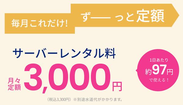 エブリィフレシャス「mini」ずっと定額毎月3,000円(税込3,300円)